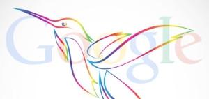 google colibri
