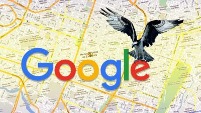 google hawk